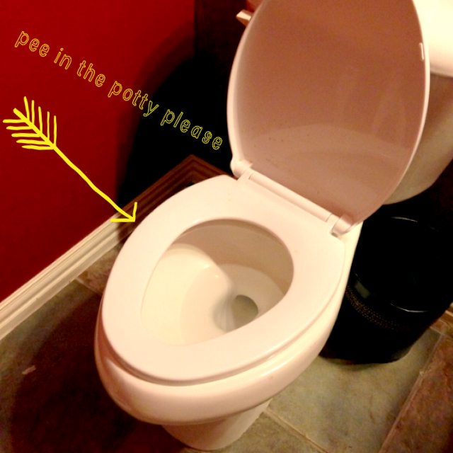 pee-in-the-potty-please