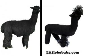 Lbb Alpaca-gallery